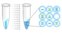 Dijital PCR Nedir, Nasıl İşlev Görür?